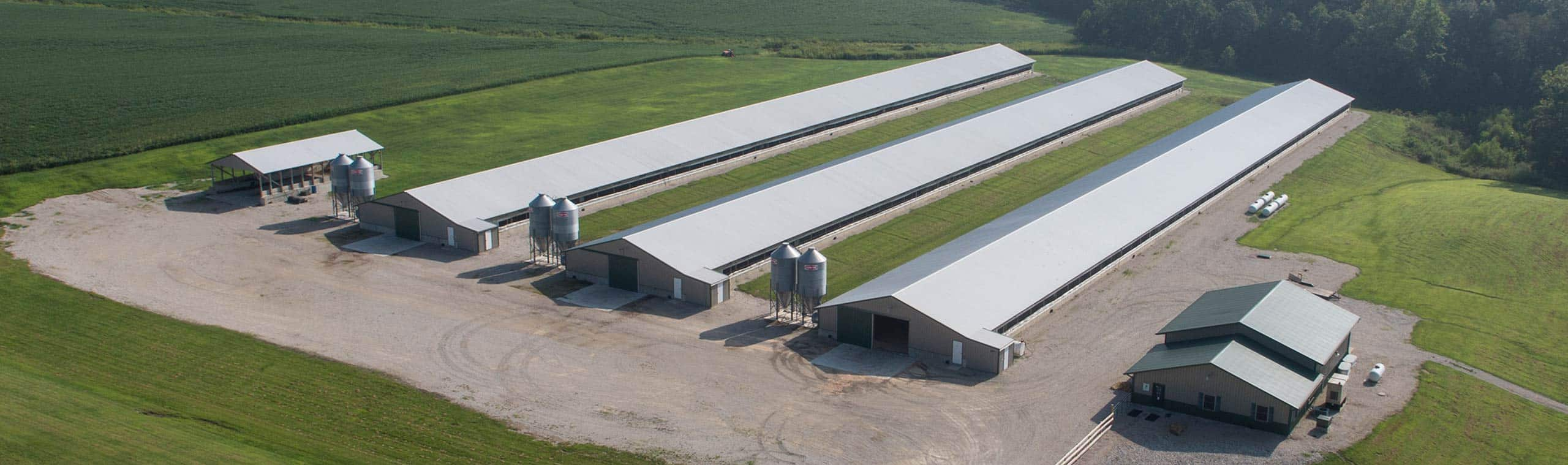 Farbest Farms Brooding Hubs